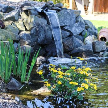 Wasser im Garten | Martin Grüber Garten- und Landschaftsbau 53567 Asbach